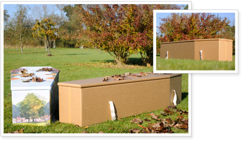 Cardboard coffins