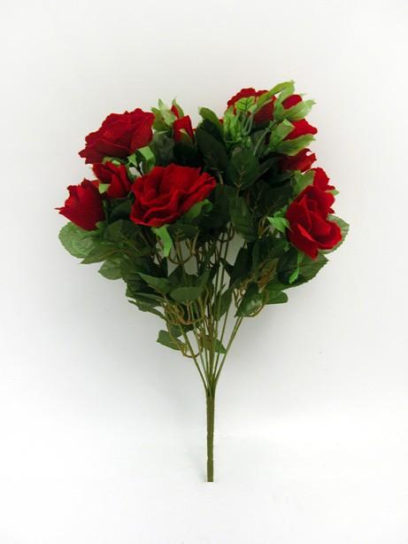 Velvet Rose Bush Red
