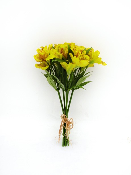 Alstromeria Bundle Yellow