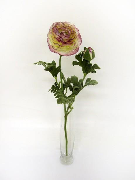 Ranunculus Cream and Purple 40cm