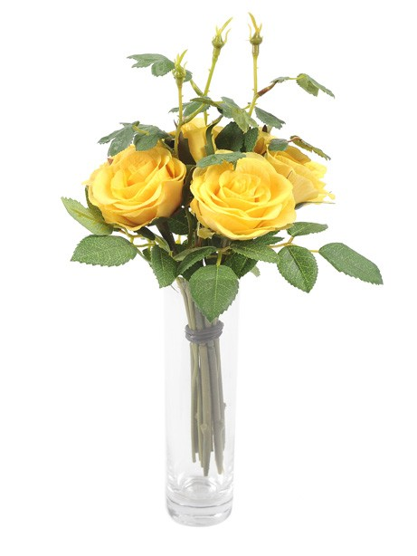 Rose Pippa Bundle Yellow 25cm