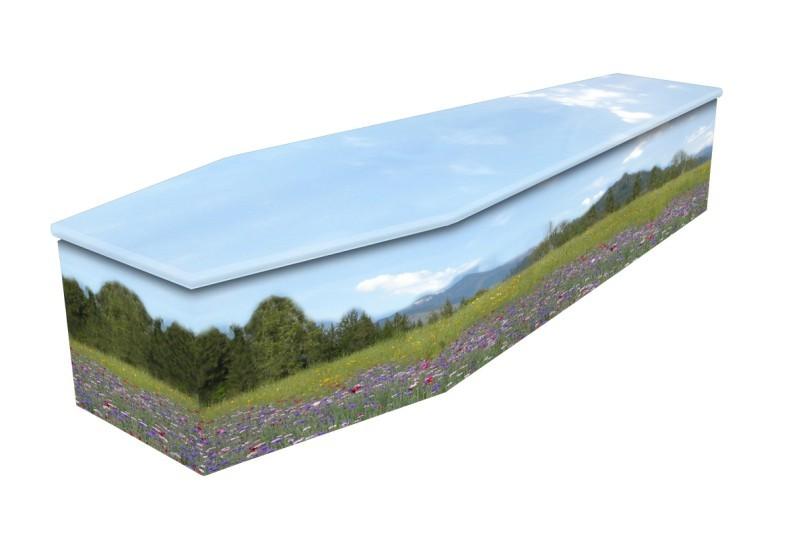 cardboard coffin Summer Meadow
