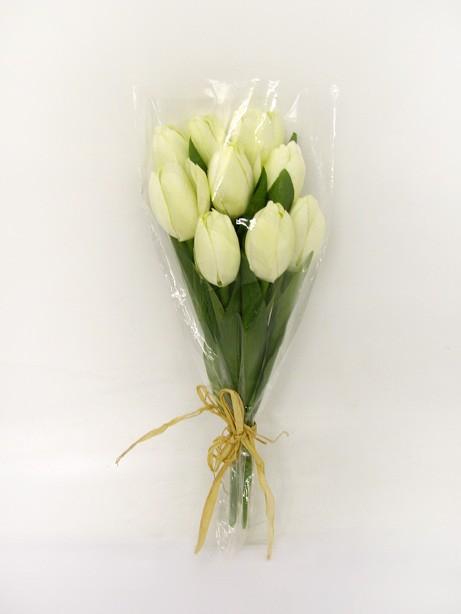 Tulip Bundle x9 Cream