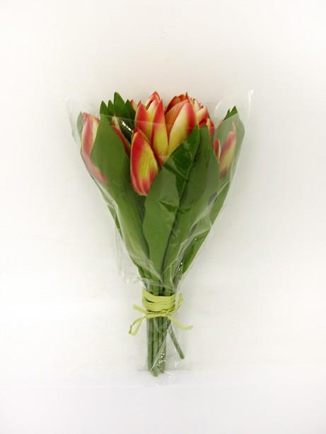 Tulip Bundle x15 Yellow/Red